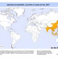 Japon Ensefaliti