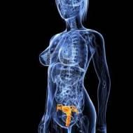 Rahim ( Endometrıum ) Kanseri