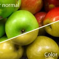 Renk Körlüğü